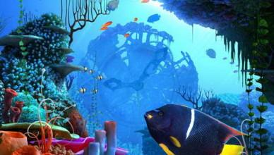 โลกใต้ทะเล-Underwater-World
